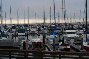 Day 6 - San Francisco Fisherman's Wharf 3